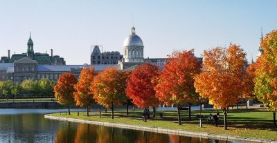 Marché_Bonsecours_and_Foliage