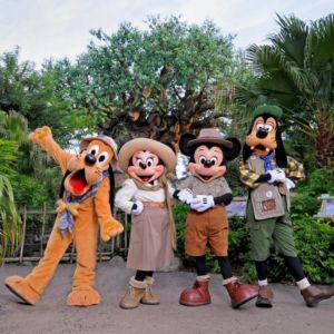 Mickey Disney Animal Kingdom